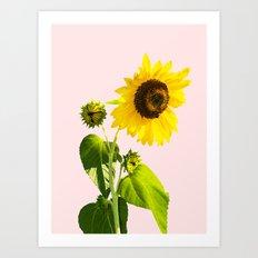 Sun Flower    #society6 #decor #buyart Art Print