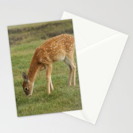 Baby Deer Nibbling Grass Doe Tan Fawn Face Looking Curious Cute Wildlife Digital Photography Stationery Cards