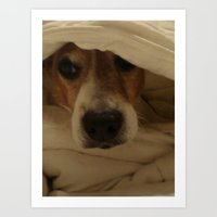 jack russell Art Prints featuring Jack Russell by Mel Waldron
