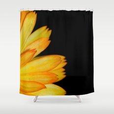 orange petals Shower Curtain