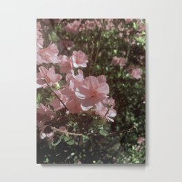 Happy Little Pink Flowers Metal Print