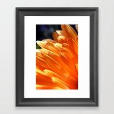 Orange Yellow Flower Petals Photograph Framed Art Print