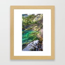 Grassi Green Framed Art Print