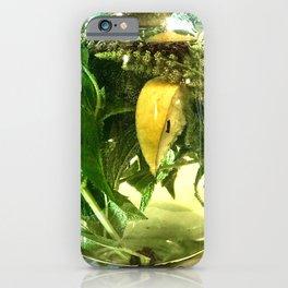 When life gives you lemons you make mint tea  iPhone Case