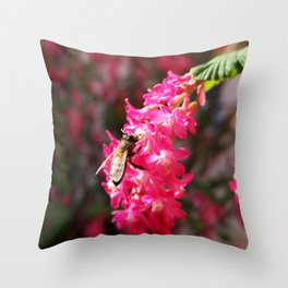 Bee2 and Blood Currant Ribes Sanguineum std Throw Pillow