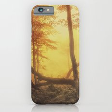 Mystical Forest iPhone 6s Slim Case