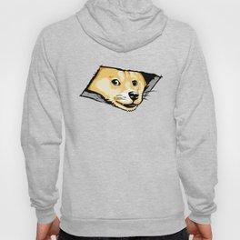 Ceiling Doge Hoody