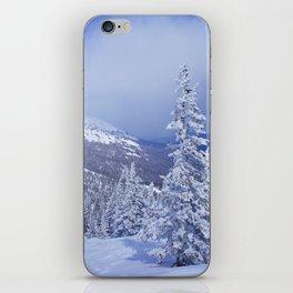 Winter day 27 iPhone Skin