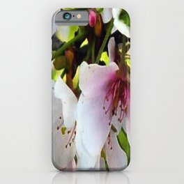 Cheery Cherry Blossoms iPhone Case