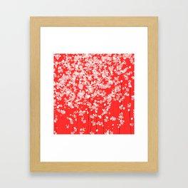 Red Shidare Sakura Framed Art Print