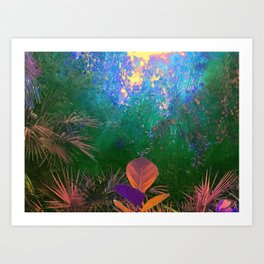 Sunlight in the Enchanted Forest Art Print