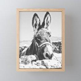 DONKEY Framed Mini Art Print