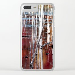 Automn Swamp Clear iPhone Case
