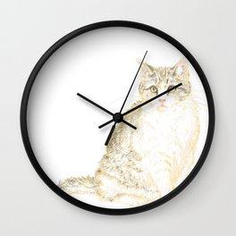 Plump Shorthair Tabby Cat Wall Clock