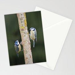 Blue Tit ( Cyanistes caeruleus) Stationery Cards