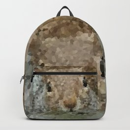 The other faces of Squirrel 2 Backpack