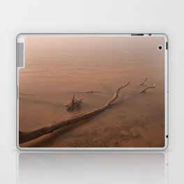 Misty Chesapeake Bay Laptop & iPad Skin