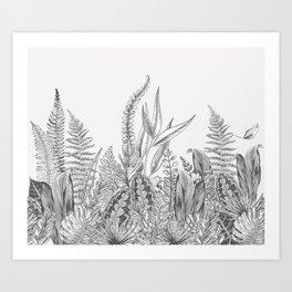 Kingdom ByN Art Print