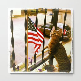 i pledge allegiance... Metal Print
