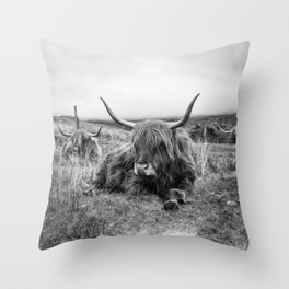 Highland Cow Sitting in a Field With Friends  Throw Pillow