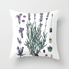 Nature, botanical print, flower poster art of True Lavender Throw Pillow
