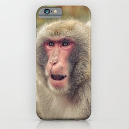 Japanese Snow Monkey Watching Lincoln Park Zoo iPhone Case