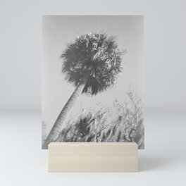 Savannah Palm Tree in Black and White - Film Photograph Mini Art Print
