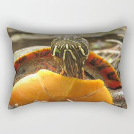 PAINTED TURTLE - E.T. LOOK-A-LIKE Rectangular Pillow