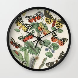 Illustrations from the book European Butterflies and Moths by William Forsell Kirby (1882) a kaleidoscope of fluttering butterflies and caterpillars Wall Clock