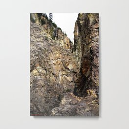In Eureka Gulch, High Above the South Fork Animas River Metal Print