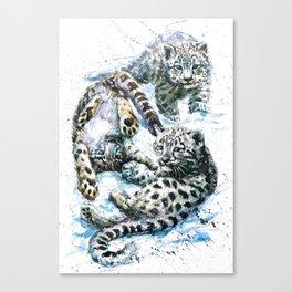 Little snow leopards Canvas Print