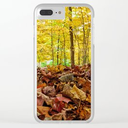 Down Low Clear iPhone Case