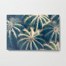 Southwest Cactus Garden Metal Print