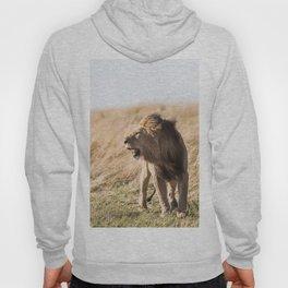 Lion Walk (Color) Hoody