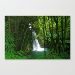 Waterfall in the Azores Canvas Print