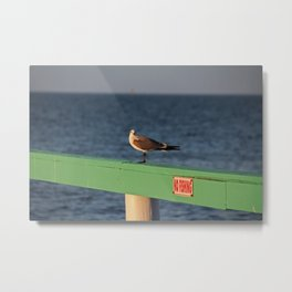 What Do You Mean No Fishing? Metal Print