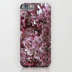 Blossoms in Bloomfield Slim Case iPhone 6s