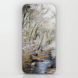 A Creek on a Snowy Day in Boulder, Colorado iPhone Skin