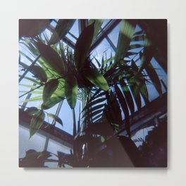 Indoor Paradise Metal Print