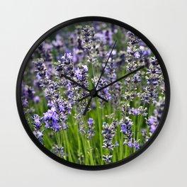 BLUE FIELD of LAVENDER Wall Clock