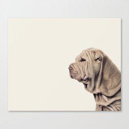 Just Shar-pei! Canvas Print