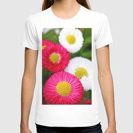 Colourful bellis T-shirt