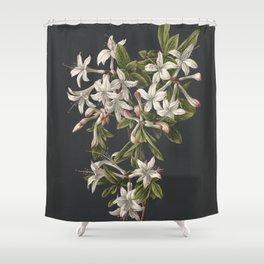 M. de Gijselaar - Branch of blooming azalea (1831) Shower Curtain