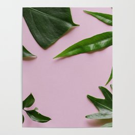 Tropical Palm Leaf Pink Background Poster