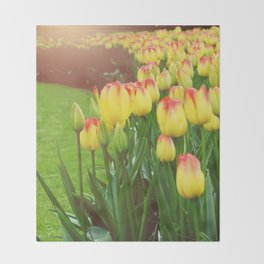 Yellow Red Tulips Throw Blanket