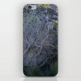 Bush Climbing up Rock iPhone Skin