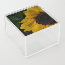 Floral Untitled .14 Acrylic Box