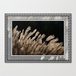 YAKU JIMA GRASS IN BACKLIT SUN Canvas Print