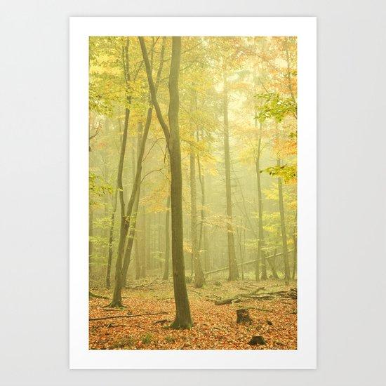 forest impression Art Print