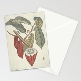 Cacao Tree Vintage Scientific Illustration by Mark Catesby, 1777 Stationery Cards